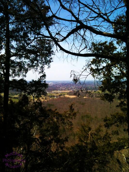 Pinnacle Views