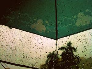 Umbrella Drops 3