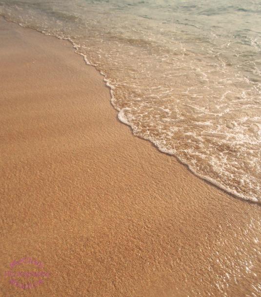 Where the Ocean Meets the Shore